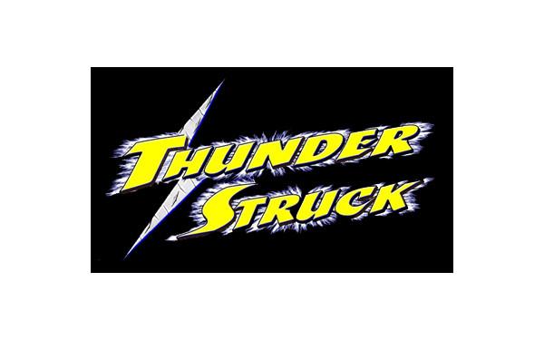 ThunderStruck Grill Guard